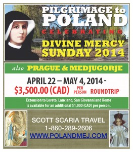 Scaria Travel WEB AD