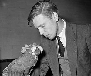 David Attenborough 1958 B&W