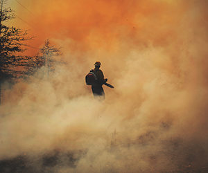 firefighter in forest fire
