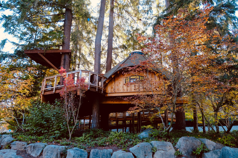 Tiny Home Treehouse Kolbe Times